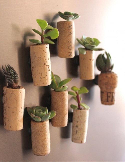 Tutorial: Como plantar en corchos